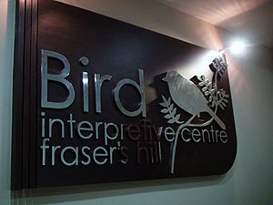 Bird Watching / Bird Interpretive Centre, Bird Watching is one of the most popular activities at Frasher's Hill. You can find information on flora and fauna,trails, the history of Frashers Hill and general information about birds at the Bird Interpretive Centre (BIC).