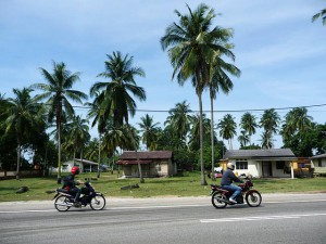 Motorbikes,  Motorbikes, Kampung Houses And Palm Trees