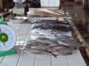 Wet Markets,  weighing scale and fishes