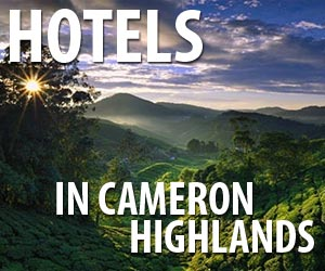 Hotels in in Cameron Highlands