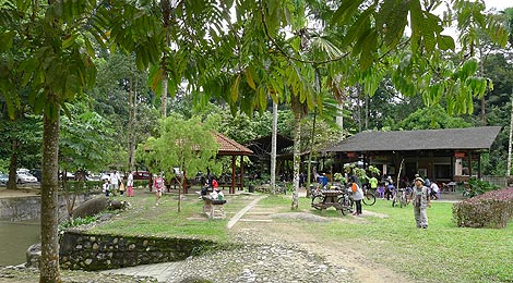 food stalls and picnic area