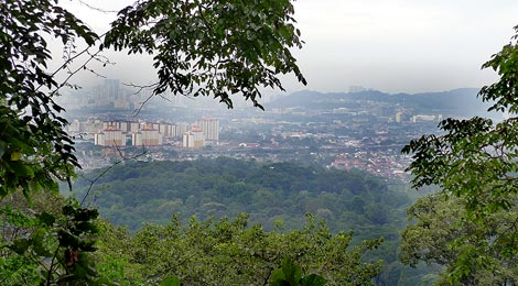 view from canpopy walk view from Canopy Walk to the northern outskirts of Kuala Lumpur : kuala lumpur canopy walk - memphite.com