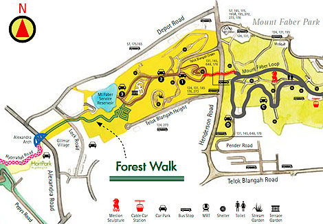 map, Forest Walk