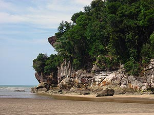 Bako National Park, Small, but diverse, National Park located 37km north-east of Kuching. Bako NP covers an area of about 27sqkm and offers jungle treks, steep cliffs, rocky headlands and stretches of sandy, secluded bays.